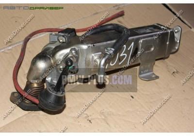Охладитель ОГ BMW 11717810751